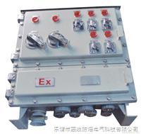 防爆配电箱BXM(D)