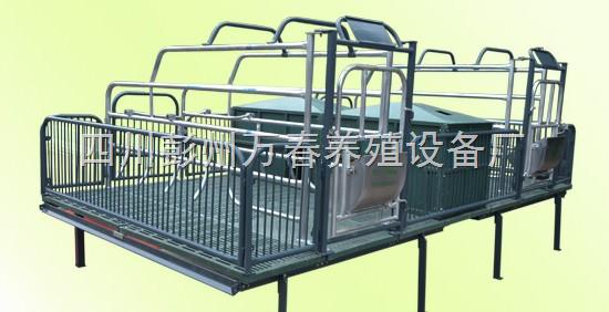万春-全自动养猪设备-自动食槽-四川成都万春机械