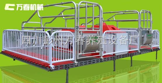 万春-仔猪保育栏-小猪保育栏-四川成都万春机械